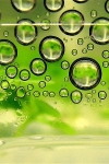 Biofuel drawbacks