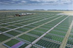 Rendering of AlgaeFarm